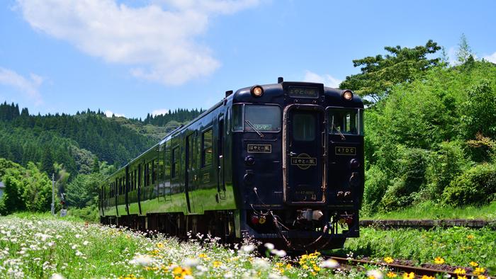 車窓の景色をながめながら、おいしい駅弁に舌鼓。こののんびりとした時間が、列車の旅の醍醐味ですよね。駅弁には、その土地ならではの魅力がいっぱい。おいしい旅のお供をたずさえて、素敵な思い出を作りましょう!