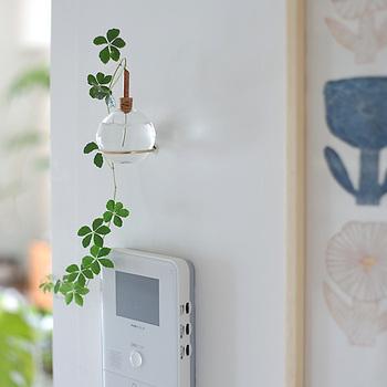 花瓶や鉢を置く場所がなかなか取れない場合には、壁や柱を利用して涼やかな空間を演出してみてはいかがでしょう。目線が高くなりいつもと違った雰囲気が楽しめます。
