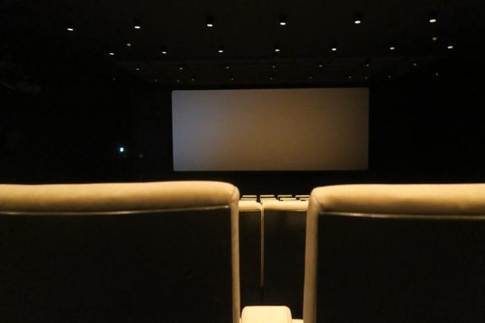 たまには2人で映画鑑賞へ行ってみませんか?ストーリーに沿ってお互い笑ったり泣いたりしてるところを見ることが楽しかったりしますよね。2時間程、ポップコーンとコーラを片手に出会った頃のように2人の距離感を感じられるおでかけもいいですよね。