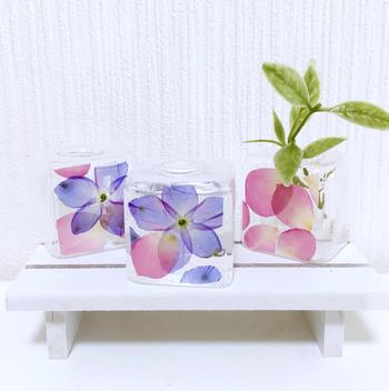 ガラスの花瓶に押し花を閉じ込めました。お花を飾らなくても、置いておくだけで美しい空間が広がります♪