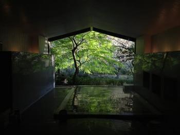 箱根は多彩な泉質でも人気が高い温泉地です。江戸時代から続く7つの温泉に、さらに明治時代以降に開かれた10種の温泉をくわえて箱根十七湯ともよばれます。箱根の玄関口ともいえる箱根湯本は、単純温泉、アルカリ性単純温泉、ナトリウム-塩化物泉といった泉質で、神経痛、筋肉痛、冷え性、美肌の湯、切り傷、慢性皮膚病などに効果があります。