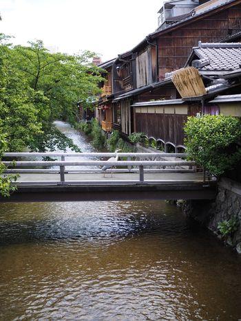 昔ながらの町並みが随所にみられる京都。風情があって何度訪れてもいいものですよね。 また、京都には昔から伝わる技で作り出される「日本の古き良きもの」も沢山。 自分だけのお気に入りのモノを探す目的で、この秋は京都におでかけしてみませんか?