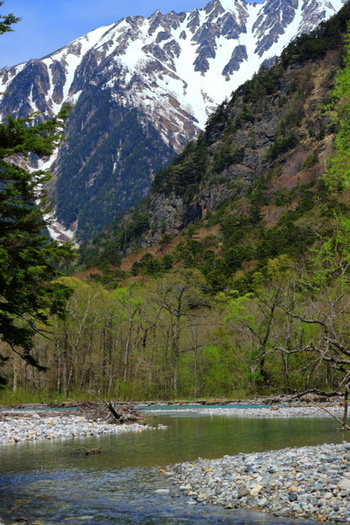 中部山岳国立公園の一部で、最も規制が厳しい特別保護地区に指定されている上高地。  JR松本駅からアルピコ交通・上高地線に乗り換えて「新島々(しんしましま)」駅で降り、「上高地バスターミナル」ゆきバスに乗れば、上高地の代名詞的存在「河童橋」や湖面にダイナミックな山岳風景を映す「大正池」、わが国有数のクラシックホテルの一つ「上高地帝国ホテル」のすぐそばまで運んでもらえますよ♪※アクセス方法はこの項の最後に。