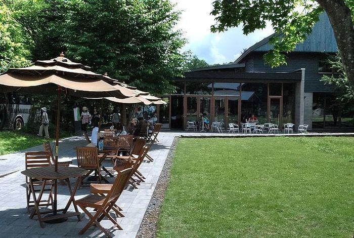 自然豊かな【軽井沢】でいただく《和食・フレンチ・イタリアン…》おすすめランチ特集