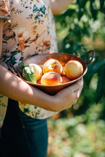 みずみずしく、優しい甘さが魅力の桃。そのまま食べても美味しいですが、旬の桃をもっと楽しみたいと思いませんか。今回は冷やす際のポイントはもちろん、桃のコンポートの作り方や、美味しいスイーツレシピを幅広くご紹介します。是非、参考にしてみてくださいね♪