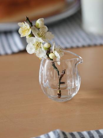 ガラスの小さなピッチャーを小さなひと枝の花器として使って。ちょっとしたアレンジですが、テーブルの中央にフレッシュな季節感をもたらしてくれます。