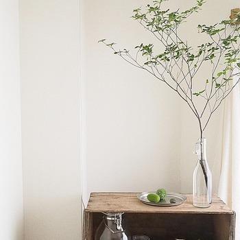 すらりと長い枝ものは口の細い瓶のようなガラス花器を使って。透明度の高いガラスを使うと、背景によく馴染みますね。