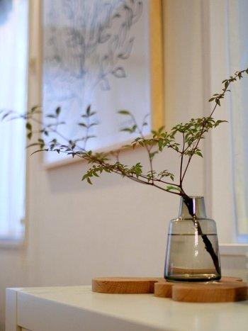 フローラベースを一段高いところに置くと、まるで床の間に飾っているかのような特別感が感じられます。低めの位置から広がる枝が優雅ですね。