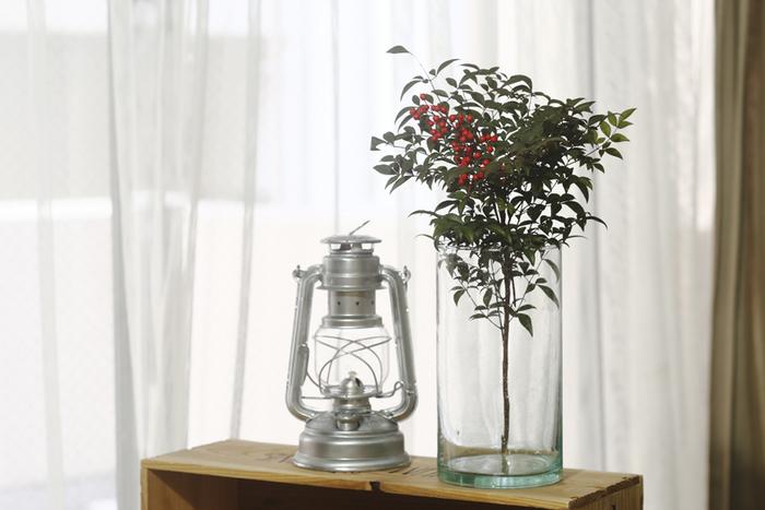 ストレートタイプの花器は、たっぷりと葉がついた枝ものも広がらずに、すっきりと飾ることができます。モロッコガラスは、光が通るとやわらかく穏やかな雰囲気に見えます。