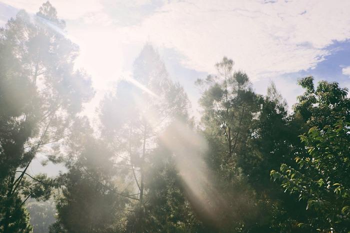 朝起きたら、なるべく外に出たり窓の近くに行って日の光を浴びましょう。朝日を浴びることで、体内時計がリセットされ、リズムを整えてくれます。