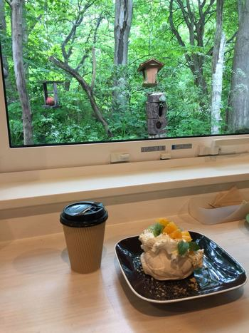 建物の裏手の森にはバードフィーダーなどが設置され、窓に面したカウンターから野鳥観察ができます。