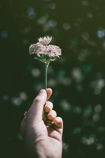 何かを詰め込んでしまうのは「足りない」「満たされない」という不安な気持ちがあるから。だけど上を見たらキリがありません。まずは自分が今持っているものに感謝し、大切にすることからはじめましょう。