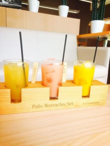 園内にある「パラボラチョ・カフェ」では、季節のスムージーやパフェなどを楽しめます。「パラボラチョセット」は、マンゴー・グァバ・パッションフルーツの3種類トロピカルドリンクを飲み比べできますよ。