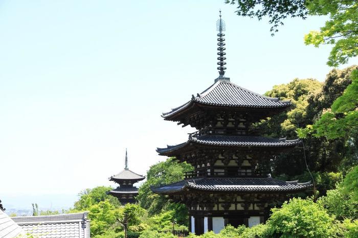 奥の院が当麻寺ではなく京都知恩院の奥の院であることから、高野山真言宗と浄土宗という2つの宗派が並立し、今年真言宗ならば来年は浄土宗、といった具合に1年ごとに宗派が入れ替わる大変珍しい寺院です。広大な境内には国宝や重要文化財が沢山あり、また牡丹や藤、ツツジなど花の寺としても有名です。