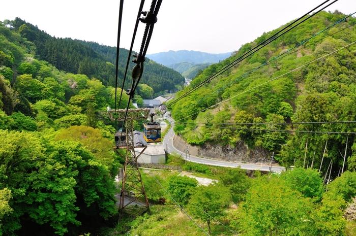 千本口から吉野山を結ぶ、現存する日本最古の吉野山ロープウェイ。眼下には下千本が広がり、春は桜、夏は紫陽花、秋は紅葉など四季折々の絶景を楽しむことができます。 ※現在運休中です。復旧については吉野大峯ケーブル自動車の公式サイトでご確認ください。