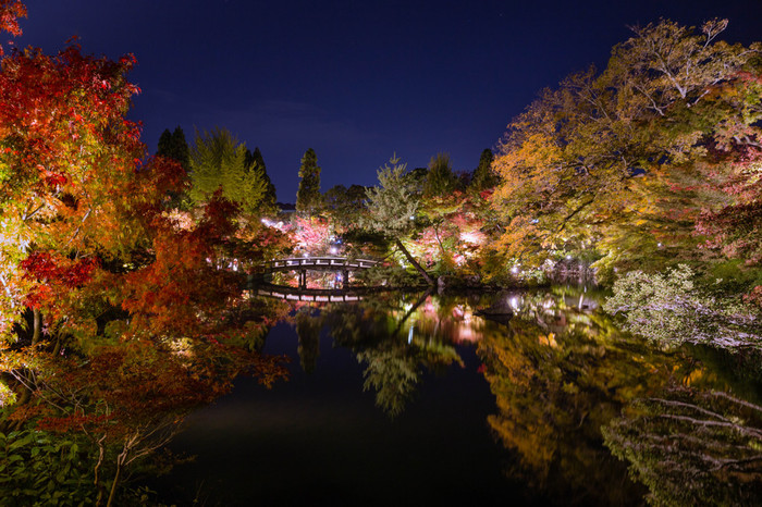 「もみじの永観堂(えいかんどう)」と謳われるほど古来から紅葉の名勝地として有名。約3000本のモミジが庭を彩り、放生池の周りを巡る回遊式の庭園は見ごたえ充分です。夜のライトアップもおすすめ。京都に行くならぜひ訪れてみてほしいスポットです。