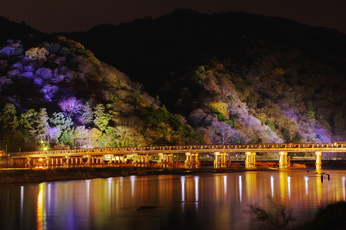 言わずと知れた京都観光の名所「渡月橋(とげつきょう)」。もちろん昼間の紅葉した山をバックに見るのが王道ですが、夜のライトアップはこんなに神秘的で美しいんです。
