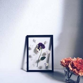 |@s.a.n.t.i.e さんより  生花で楽しんだ後は、押し花にしてその美しさを閉じ込めて。こちらのフレームは、2枚のアクリルガラスにカードやポスターを挟んで、4辺に木製パーツをはめ、ゴムバンドで固定するという仕組み。余白を活かした植物の飾り方が、美しいの一言。