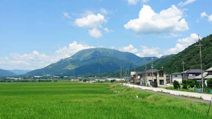 お店はあたり一面田園で、伊吹山の全貌が眺められます。