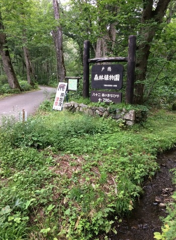 長野駅から「戸隠」行きのバスで60分、同名のバス停で下車してすぐ。 パワースポットとして知られる「戸隠奥社」につながる広大な森に作られた植物園で、高山植物の好きな方だけでなく、森の向こうに戸隠を望む風景の美しさから、写真撮影に訪れるひとも少なくありません。100種とも言われる野鳥が生息し、日本有数の野鳥の宝庫でもあります。園内入り口にあるビジターセンター「八十二 森のまなびや」で予備知識を仕入れて歩くとより楽しい♪