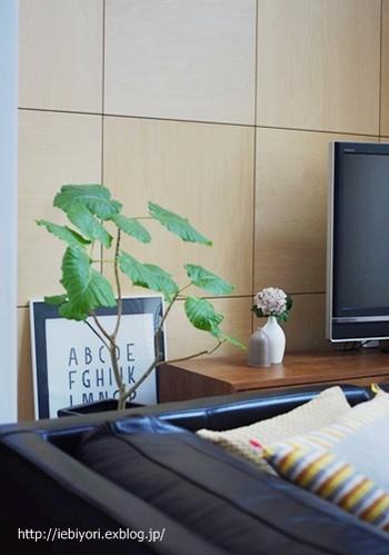 テレビ台のちょっとしたスペースも、お気に入りの雑貨を飾って自分らしい空間に。フラワーベースも、2つセットで飾ることで奥行きが出てぐっとおしゃれになります。
