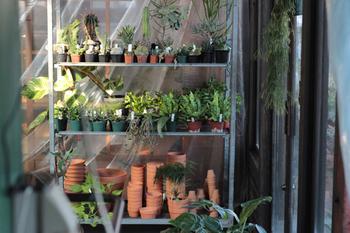 これまで園芸店だけでの販売が主流だった植物を様々な場所で販売できるアイテムとして提案しているショップです。植物を通して衣食住にアクセントを加えられるような商品展開を行っています。