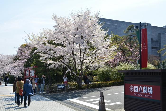 2016年に開場50周年を迎えた国立劇場。歌舞伎のほかにもさまざまな伝統芸能が上演されており、日本の伝統文化を支える重要な劇場といえるでしょう。  歌舞伎の上演は通年ではありませんが、歌舞伎がよく上演されている代表的な劇場のひとつです。特に、1月の新春公演は人気が高く、年始の風物詩にもなっています。  国立劇場の公式サイトでは、歌舞伎初心者に向けた「歌舞伎の楽しみ方」が紹介されています。観劇前に、一読しておくのもおすすめです。