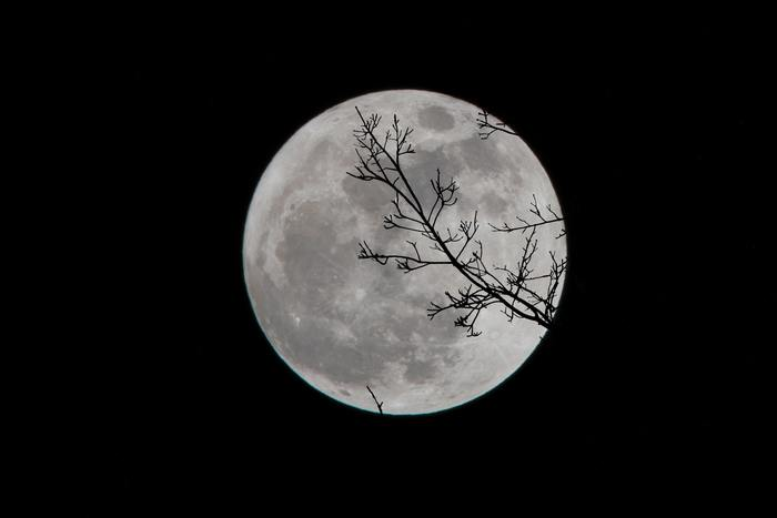 秋に楽しみたい「お月見」。【中秋の名月】は、空が澄み渡り、最も月が美しく見える季節であることから、日本では平安時代から親しまれてきた伝統的なイベントです。