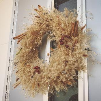 すすきを使ったリースを飾ってもおしゃれ。リースは、壁や玄関など色々なところに飾れるので、小さなお子さんがいるご家庭にもおすすめです。