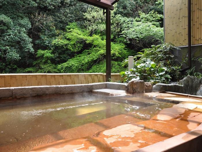 温泉は渓流を見下ろしながら楽しめます。濃度が高い天然ナトリウム泉で、関節痛や消化器疾患・皮膚疾患などに効果があるとされ、古くから湯治場とされてきました。