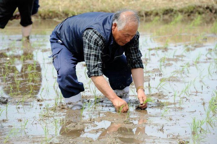 通常、私たちがお米を買うときは、生産地や「コシヒカリ」「あきたこまち」などの銘柄で購入することが多いと思いますが、こちらのサイトでは、米職人(生産者)ごとに、そのこだわりや特徴などが細かく紹介されています。