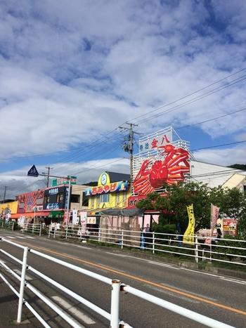 新潟県といえばお米を連想する方が多いと思いますが、日本海に面しているため、美味しい海の幸をいただくことができるのも魅力の地です。長岡周辺を観光する場合、寺泊にある「魚の市場通り」に足を運べば、新鮮な海鮮をたくさん食べ、またお土産として購入することができますよ。