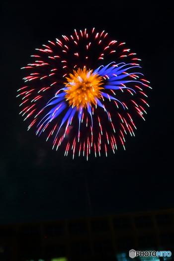 8日(土)に「花火打ち上げ」も開催予定です。焼き物探しと一緒にお祭り気分も味わえますよ。