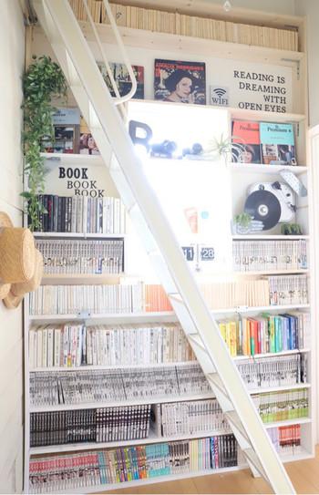 壁一面を大胆に使って本棚をDIY。スペースが広い分、雑貨を飾る余裕もあり、遊び心を感じさせる収納になっています。