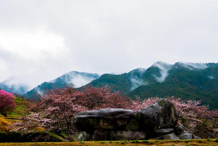 奈良市から電車で約45分の場所に位置する明日香村は日本が初めて国家としての基盤を固め、政治・文化の中心となった場所。村のあちこちに1400年前の飛鳥時代の息吹が感じられ、古代ロマン溢れる魅力的なスポットです。  ●奈良市内からのアクセス 「近鉄奈良駅」~近鉄奈良線~「大和西大寺駅」~近鉄橿原線~「橿原神宮前駅」~近鉄吉野線「飛鳥」(約50分)