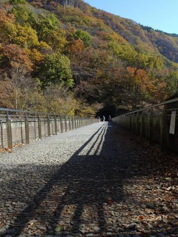 安中市の横川駅から熊ノ平駅間の、アプト式鉄道の廃線跡約6kmを整備し、遊歩道となっている「アプトの道」。四季折々の自然にふれることができます。