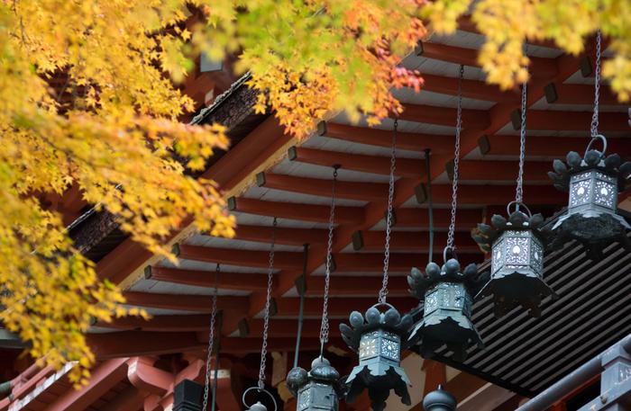 """明日香村のお隣にある桜井市は日本最古の神社と言われる大神神社を始め、長谷寺、談山神社、等弥(とみ)神社など由緒ある神社仏閣が点在し、また仏教伝来の地であり、芸能や相撲発祥の地でもある""""はじまりの街""""です。  ●奈良市内からのアクセス 「JR奈良駅」~JR桜井線~「桜井駅」(約30分)"""