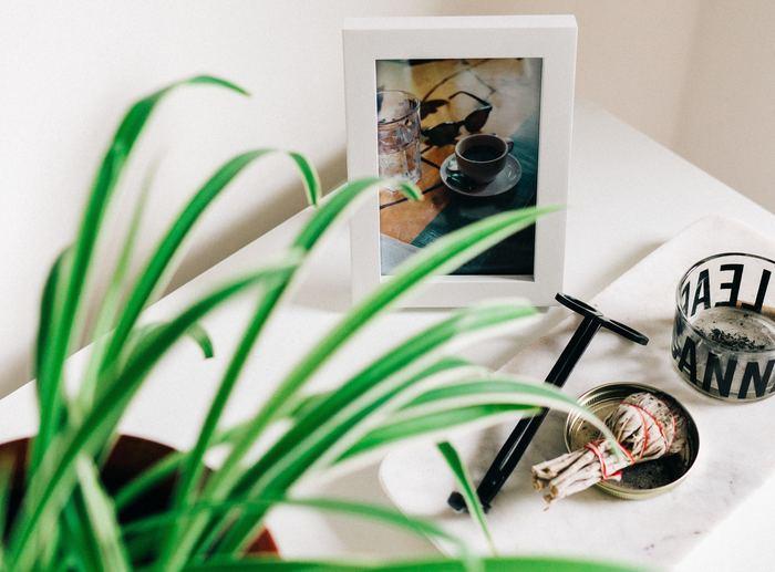 チェストの上に植物と一緒に置くのもおすすめ。お気に入りのフォト作品をフレームに入れて。はがきサイズ等の小さい作品であれば、独立する写真立てなどに入れて飾れば倒れないし、ひとまわり大きくなって全体のバランス感もアップ◎。
