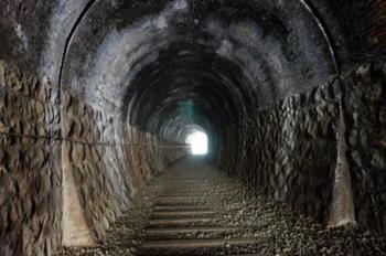 武田尾駅のそばには、旧国鉄の廃線跡のハイキングコースもあります。コースには、当時使われていたトンネルの他、親水公園や武庫川の上流などがあり、自然に触れながら散策することができます。枕木をたどって歩きましょう。