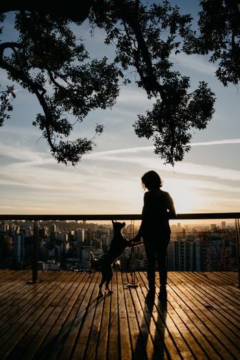 朝陽を浴びると体内時計が整うとはよく言われることですが、夕日は感情をリセットしてくれるといわれています◎ 夕方、ちょっとドリンクを買いに外に出てみたり、お休みの日にお散歩してみるのもいいかも。 星空を眺めながら考え事するのも、良いひらめきがあるかも♪