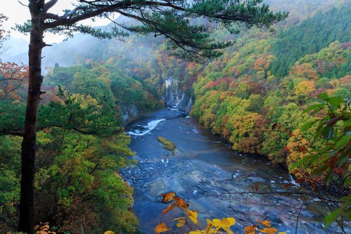 紅葉の季節も、木々が映えて色づく渓谷が美しくおすすめです。