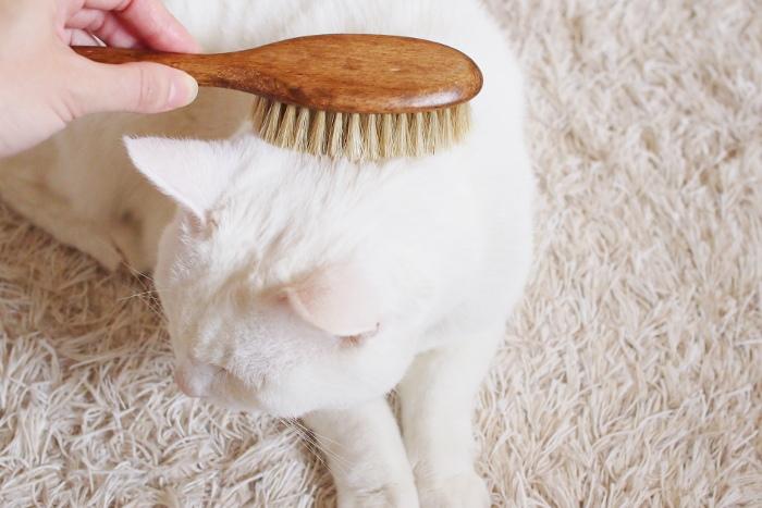 豚毛で出来たキャットブラシは、静電気が起きにくく艶を与えてくれます。ブラッシング好きな猫ちゃんとの時間をじっくり楽しめる上質なブラシです。