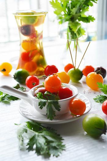 お弁当のアクセントにただミニトマトを入れるだけではつまらない・・・。そんな時は、こちらのレシピがおすすめです。 パクチーがいいアクセントになって、いつものピクルスとは一味違うものに。 種類の違うミニトマトを混ぜると、見た目も楽しくなりますね。