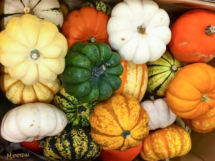 秋に美味しいかぼちゃ。秋限定でかぼちゃスイーツを出しているお店も多いので、この秋はかぼちゃスイーツを楽しみにでかけてみませんか?