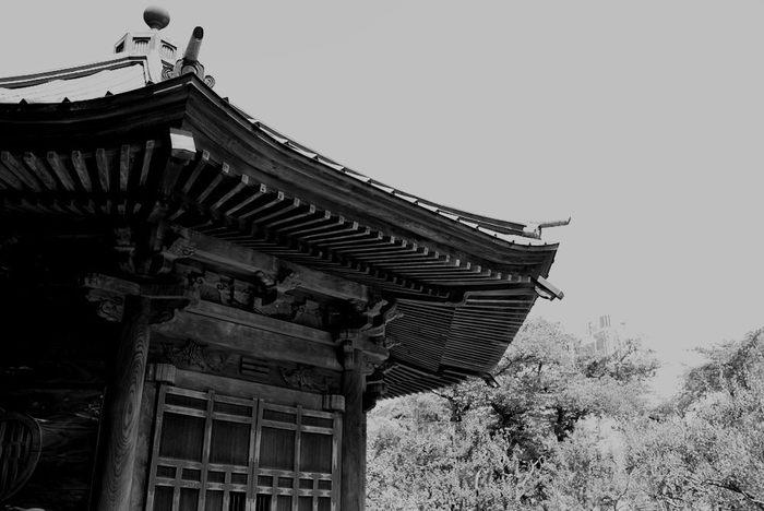 日本ではじめて餃子を食べたのは「水戸黄門」としても知られる徳川光圀公だったと言われています。明から招いた儒学者の朱舜水が光圀に献上したのが、鴨肉を使った餃子だったそうです。ただ、今のように庶民に人気の大衆食になったのは、戦後のことです。