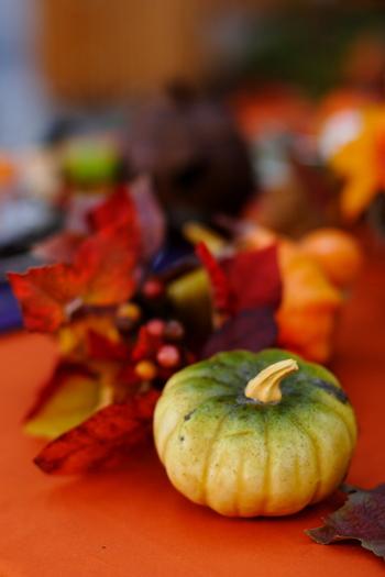 リアルなかぼちゃの色味に近いものをひとつだけ置くと、とても自然な雰囲気が漂います。あまり大げさにしたくないけれど、ほんのりとハロウィンを感じたいときにおすすめの飾り方です。
