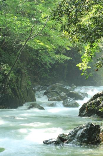 透明度の高いキレイな川で、暑い季節には川遊び、秋は紅葉が楽しめる三波渓谷。無料の広い駐車場があり、意外と空いている穴場スポットです。