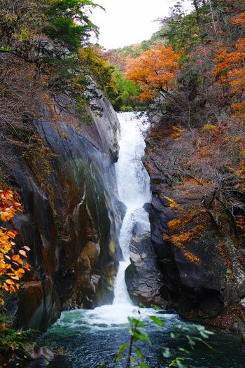 花崗岩の岩肌を落下する落差30mの滝は、昇仙峡の最奥部あります。紅葉のシーズンはもちろん、雪が積もった後の景色も魅力的なので、年中多くの観光客で賑わっています。