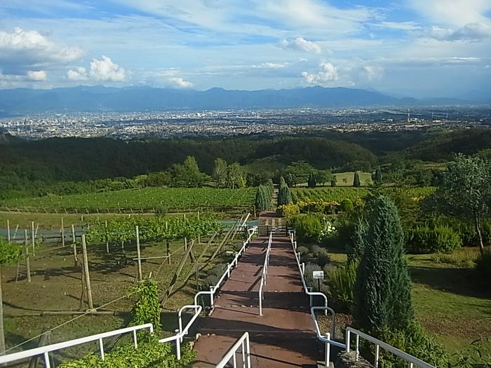 眺めが良い丘の上にある「サントリー登美の丘ワイナリー」では、ワインについて学べるコースが4種類あります。その中でも有料コースの一つ「登美の丘ツアー」がおすすめ。ぶどう畑やワインの醸造所、ワインの樽熟庫・瓶熟庫を見学し、3種類のワインのテイスティングができます。