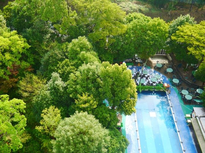 緑が茂る庭園があり、気持ちよく散歩ができます。プール、大浴場、サウナ、コンビニも。家族で過ごすにはぴったりのホテルです。